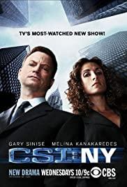 ดูหนังออนไลน์ฟรี CSI New York Season 5 Ep 20 ซีเอสไอ นิวยอร์ก ปี 5 ตอนที่ 20